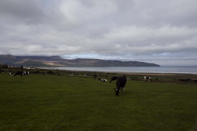 Fort Farmhouse, Castlegregory, Co Kerry